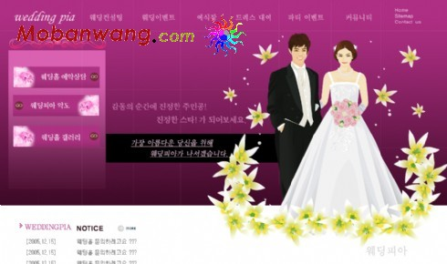 Purple wedding photo studio web templates